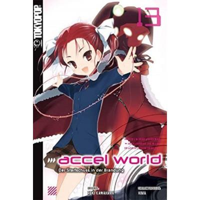 Accel World 13 Light Novel