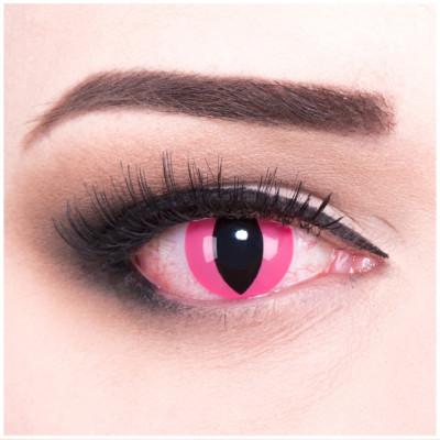 Pink Cat Kontaktlinsen