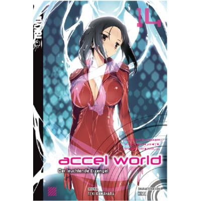 Accel World 14 Light Novel